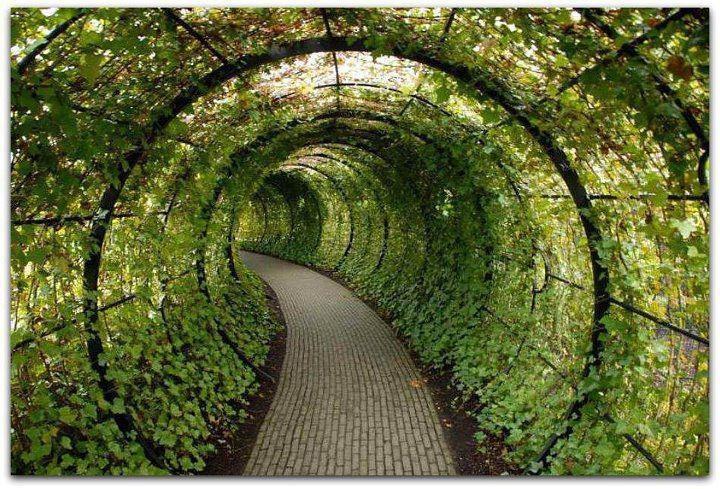 green walkway Green Architecture Pinterest Green