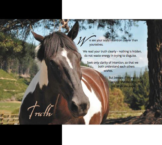 'We read your truth clearly - nothing is hidden...'  excerpt from Horse Lore