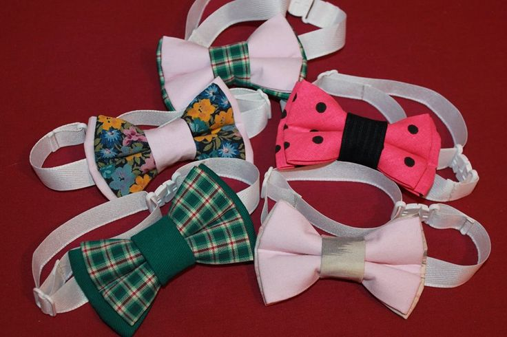 Double bow ties for dogs (11/6,5 cm), hand made, can be attached to the collar, price 2,2 euro / piece or bow tie with collar (10/6 cm with adjustable length max 38 or 45 cm).