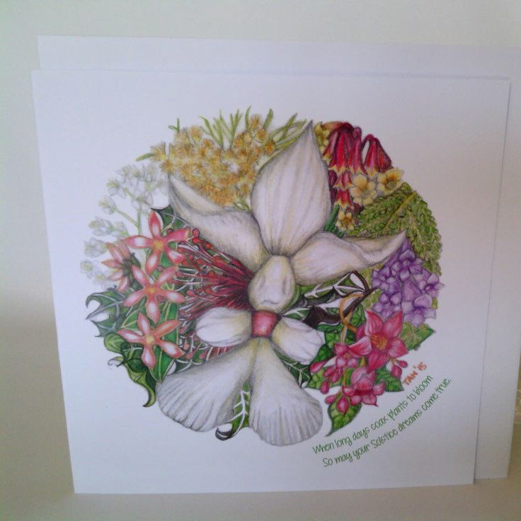 Buy now ready for Christmas... Summer Solstice Christmas in Australia Cards.