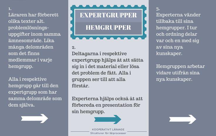 Expertgrupper och hemgrupper för Kooperativt Lärande