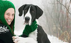 5 Gentle Giant Family Dogs: Animal Planet