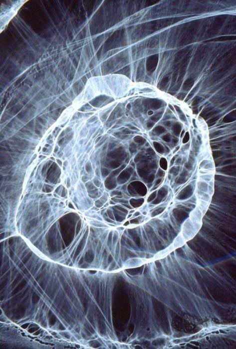 Alan Jaras. Refraction of light through textured glass.