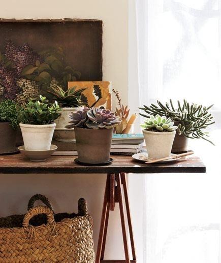 Flores no ambiente de trabalho!     Para deixar o ambiente a sua cara, que tal montar alguns vasinhos com  as flores que você mais gosta?