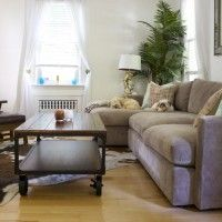 Ideas. Alluring Cozy Living Room Design Showcasing L-Shaped Worn Out Beige Sofa And Wheeled Wooden Coffee Table And Vintage Chaise Lounge As Well AS Brown White Cowhide Rugs On Laminated Wooden Floor Ideas. Comfy And Homey Cowhide Rugs Design For Natural Flooring Decoration Ideas