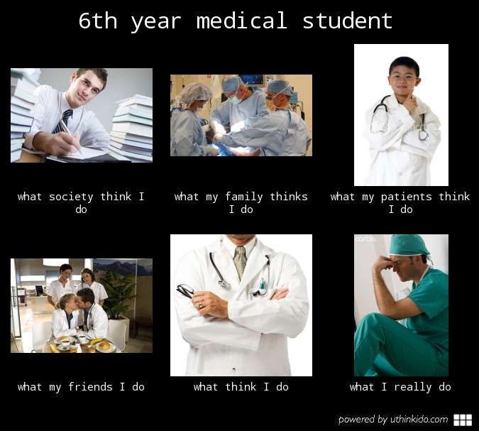 Funny Med School Meme : Funny medical student memes imgkid the image
