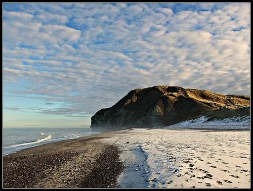 Bulbjerg Bird Cliff