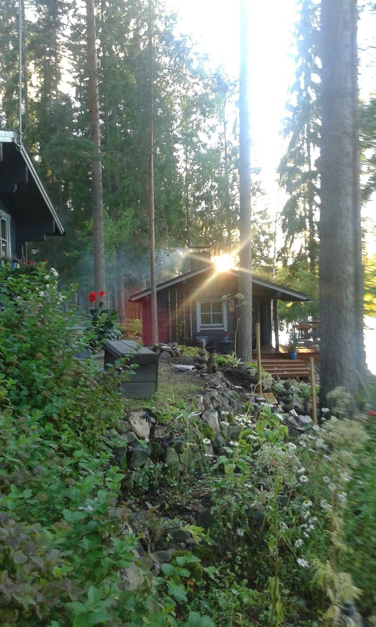Smoke is rising from the saunas pipe in October, Laukaa, Finland.