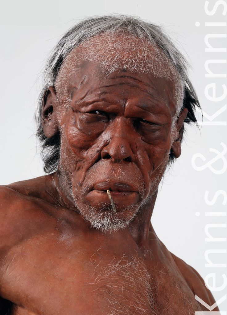 an introduction to the history of homo sapien Homo sapiens - cro-magnon homo: species: homo sapiens / sapiens the long genetic and fossil history of h sapiens in africa paints a strong multiregional view.
