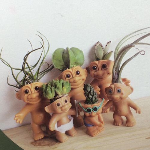 Remove the hair from troll dolls and replace with succulents and cacti