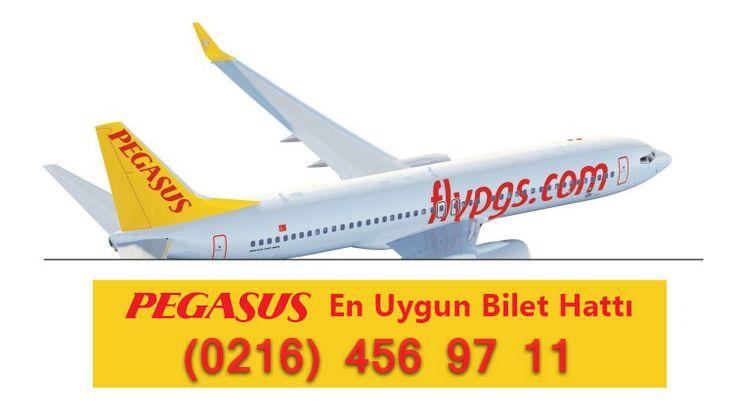 pegasus en uygun uçak bileti satın alma telefon http://goo.gl/igkOhV #pegasustelefon #sunexpresstelefon #ucakbileti #istanbulucakbileti www.sunexpressbilethatti.com
