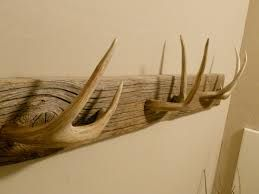 antler coat hangers - Google Search
