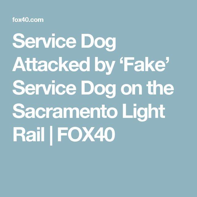 Service Dog Attacked by 'Fake' Service Dog on the Sacramento Light Rail | FOX40
