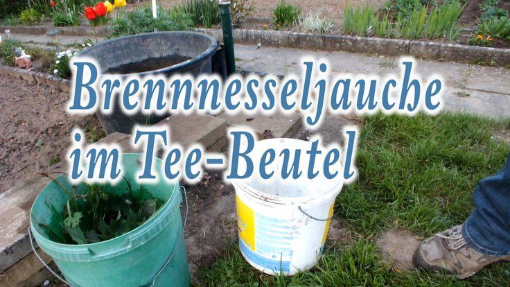 Garten-Tipp: Brennnesseljauche im Tee-Beutel