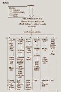 Pathway Leptospirosis