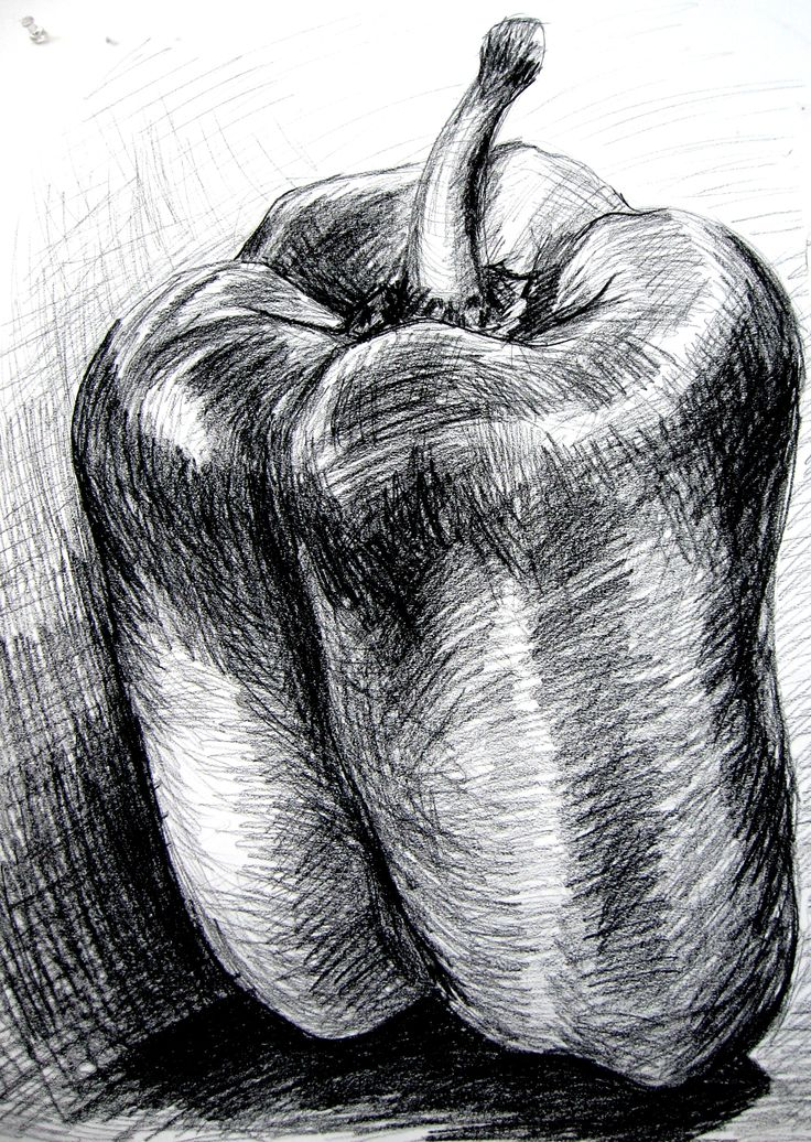 bell pepper - charcoal. Note the different directions of the marks and lines to…