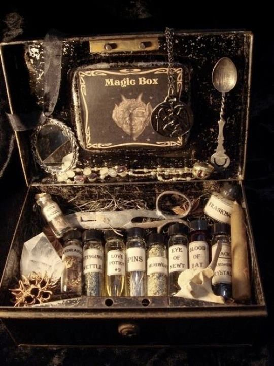 I love this idea. I should use an old briefcase and turn it into a mini altar/witch box.