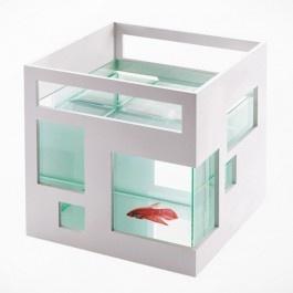 Fish hotel is een hippe visbokaal die past in elk interieur. Door de aquarium in de vorm van een huisje om te draaien krijg je steeds een ander zicht op de vissen. Een handige kliksysteem maakt het ook mogelijk de meerdere visbokalen op elkaar te stapelen. Zo kan je er een echt Fish Hotel van maken!