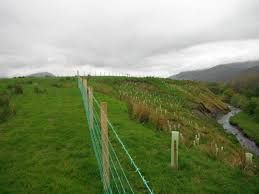 Environment Agency reinvests rod licence money to improve River Derwent http://www.cumbriacrack.com/wp-content/uploads/2017/01/fencing-and-tree-planting-riverbank.jpg The Environment Agency working with the Derwent River Corridor Group and West Cumbria Rivers Trust have contributed £5,000 to support work to improve the quality of the river    http://www.cumbriacrack.com/2017/01/12/environment-agency-reinvests-rod-licence-money-improve-river-derwent/