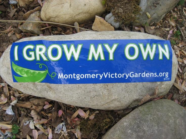 Message from my garden.Gardens Fun, Messages
