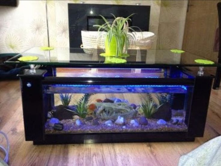 Best 25 fish tank coffee table ideas on pinterest how - Aquarium coffee table diy ...