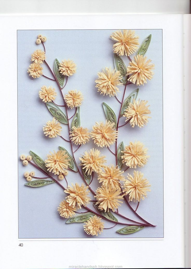 Download PDF A Guide To Quilling Flowers Free Online