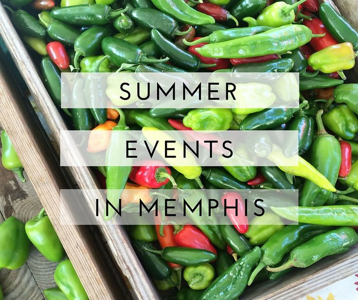 From free weekly concerts to story slams to food festivals, here are 28 things to do in Memphis this summer. At the time I'm publishing this, we still have a few weeks left worth of events in…