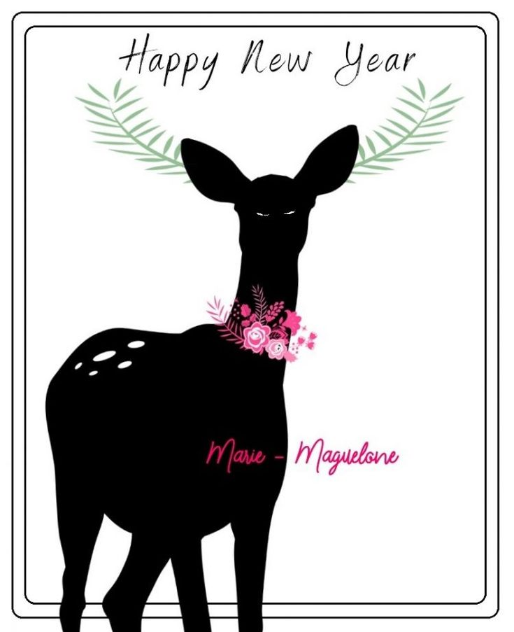 Happy New Year sur le blog Marie-Maguelone !!