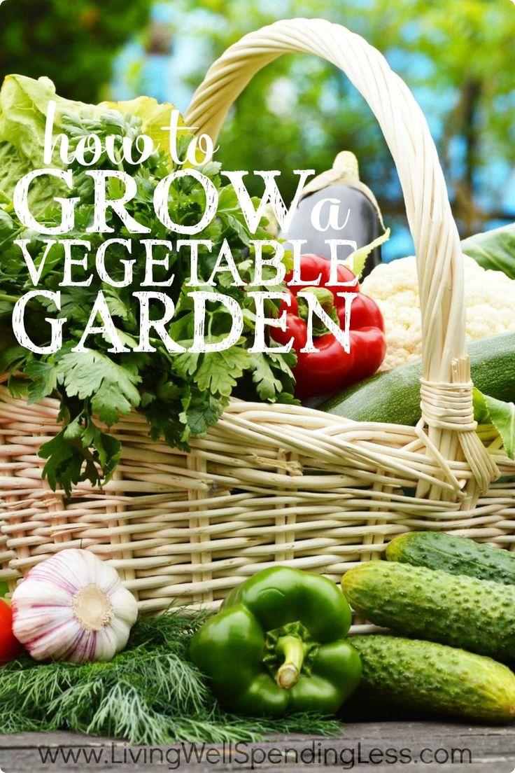 How To Grow A Vegetable Garden Vegetable Garden Gardens And Garden Boxes
