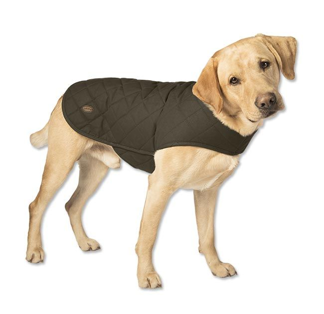 Just found this Quilted+Dog+Jacket+-+Quilted+Waxed-Cotton+Dog+Jacket+--+Orvis on Orvis.com!
