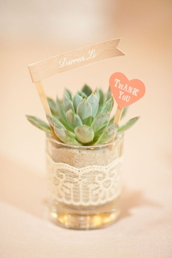 succulent wedding favors planted in votive candle...