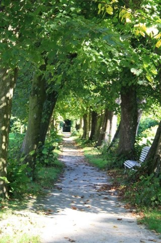 Bos van Ype, Tytsjerk Fryslan