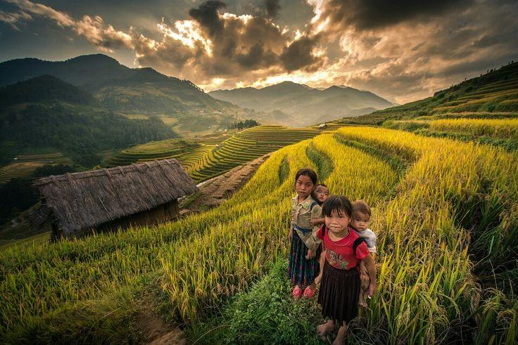 che cu nha mu cang chai vietnam photo by nutthavood