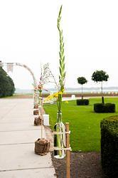 Bloemenvaas op plank