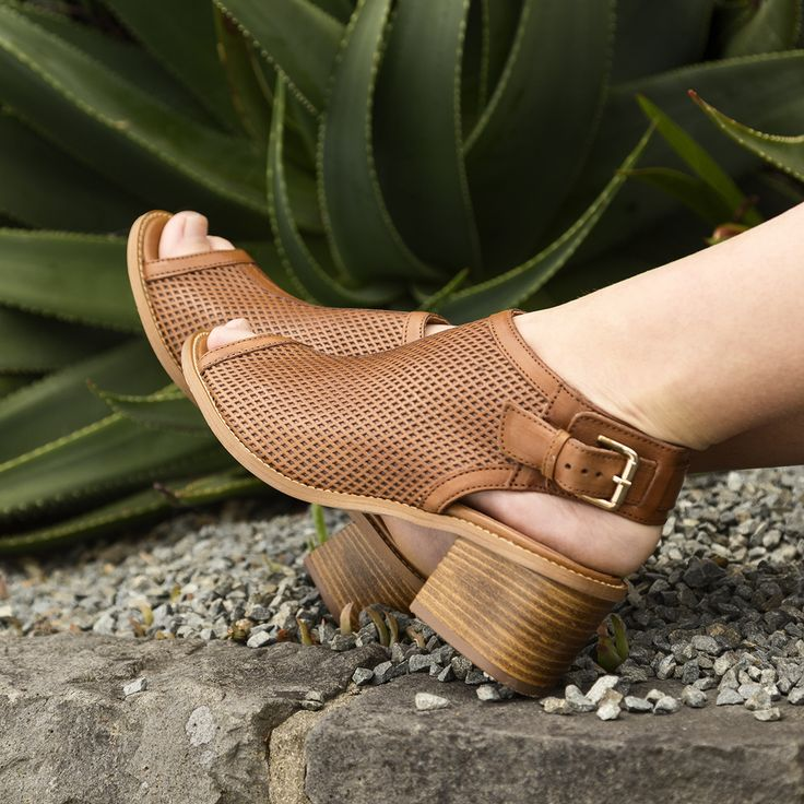 Summer style at its best with the Miss Sofie 'Gill' sandals. Shop: https://www.shoeconnection.co.nz/womens/heels/mid-heels/miss-sofie-gill-leather-heel?c=Carioca%20Vit%20Drop%20Cuoio