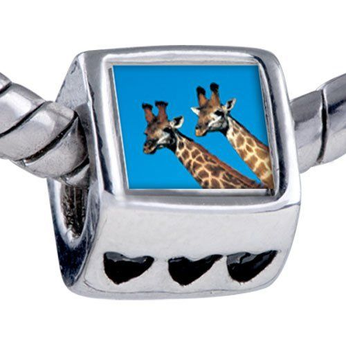 Pugster Bead Giraffes Beads Fits Pandora Bracelet Pugster. $12.49. Hole size is approximately 4.8 to 5mm. It's the photo on the heart charm. Unthreaded European story bracelet design. Fit Pandora, Biagi, and Chamilia Charm Bead Bracelets. Bracelet sold separately