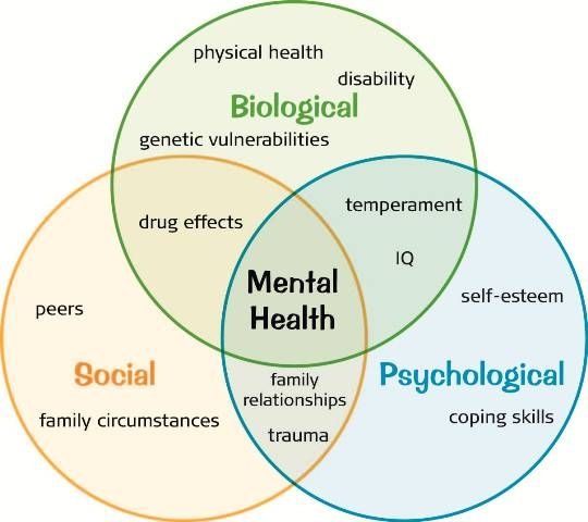 the relationship between health and psychology Write a 500- to 700-word paper on health and psychology include the following: •describe the relationship between health and psychology •identify specific lifestyle choices that affect.