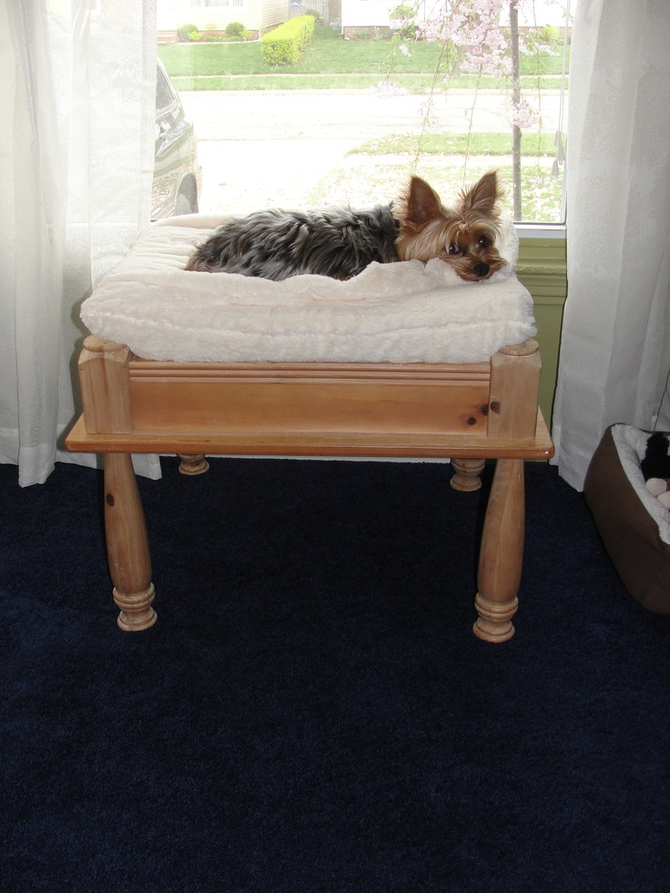 62 best fynnster style images on pinterest doggies pet for Making a dog bed out of a table