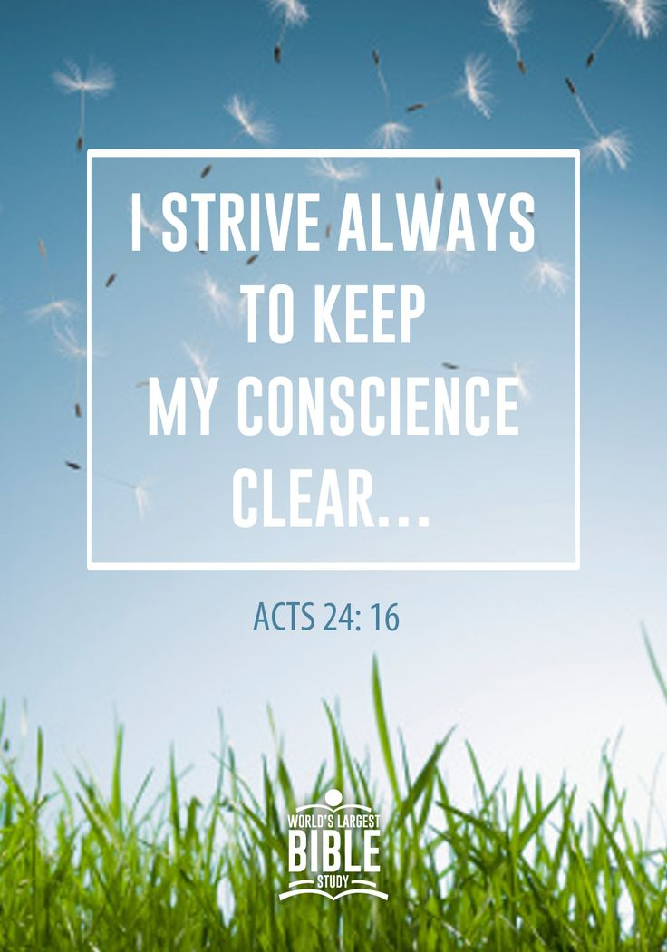 "Acts 24: 16 (From Paul)  I always try to maintain a clear conscience before God and everyone else.""  NLT"