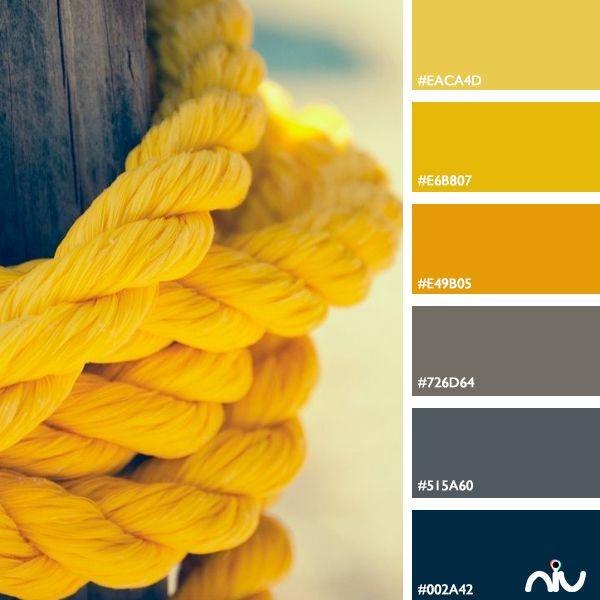 Rope Color Palette