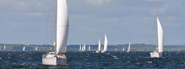 Yachtcharter - Regatta in Kroatien  #kroatien #segeln #yacht #urlaub #kroatien_urlaub #yachtcharter_kroatien #yachtcharter #yachting #sailing #yachting #pco #boating #bareboat