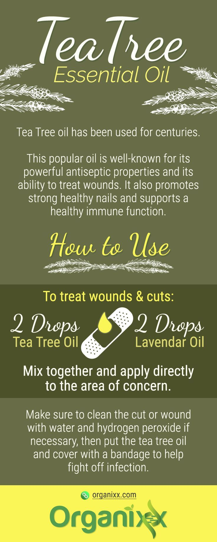 TEA TREE ESSENTIAL OIL: Tea Tree Oil is great to treat wounds & cut. Just mix 2 drops of tea tree oil together with 2 drops of lavender essential oil and apply on the area of concern.