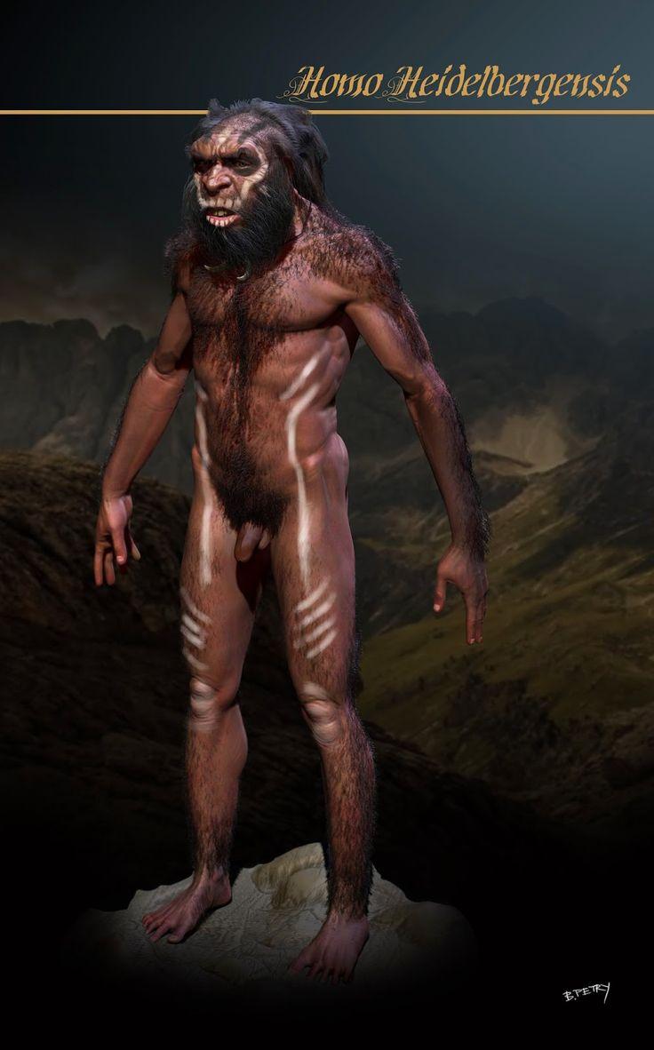 Homo heidelbergensis es una especie extinta del género Homo. Eran individuos altos que tenían 1,80 m de estatura y muy fuertes (llegarían a 105 kg), de grandes cráneos que median 1350 cm³, muy aplanados con relación a los del hombre actual, con mandíbulas salientes y gran abertura nasal.