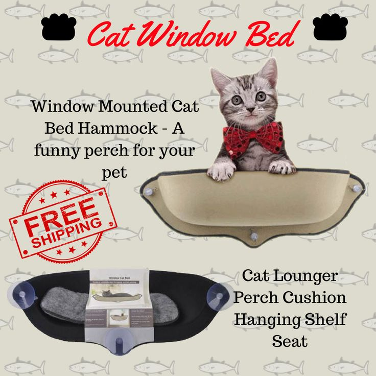 Removable Cat Window Bed Ultimate Sunbathing Cat Window Mounted Cat Hammock Bed