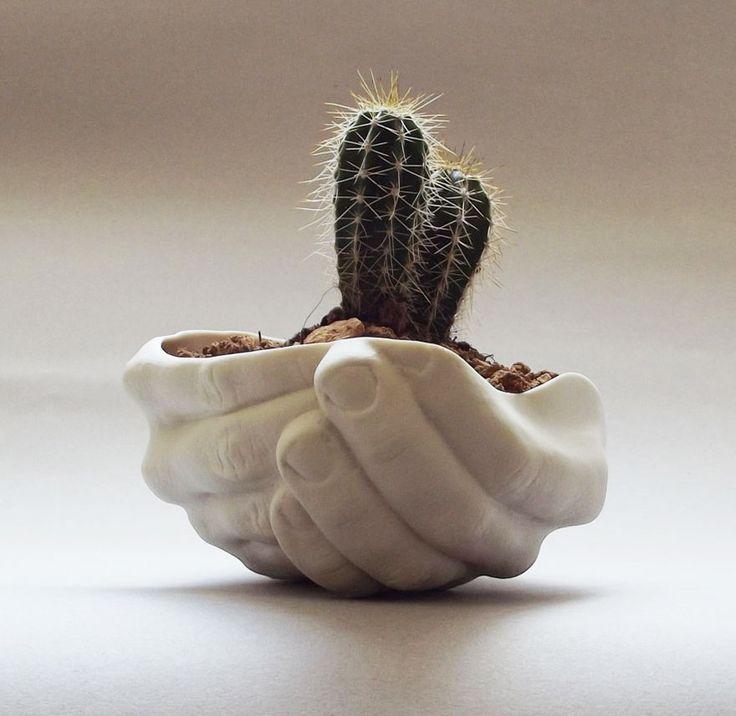 Para las amplias posibilidades que nos da a naturaleza la variedad de macetas puede ser inmensa.