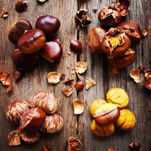 #Chestnut season is approaching fast. Rumour has it the first nuts have hit the #Sydney wholesale markets! Stay tuned for this seasons new recipes. #chestnuts #inseason #fresh #australianchestnuts
