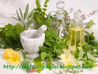 Τα φαγητά της γιαγιάς: Βότανα - πως φτιάχνουμε εκχυλίσματα, έλαια και κρέ...