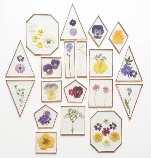 35 DIY Dried And Pressed Flower Home Decorations