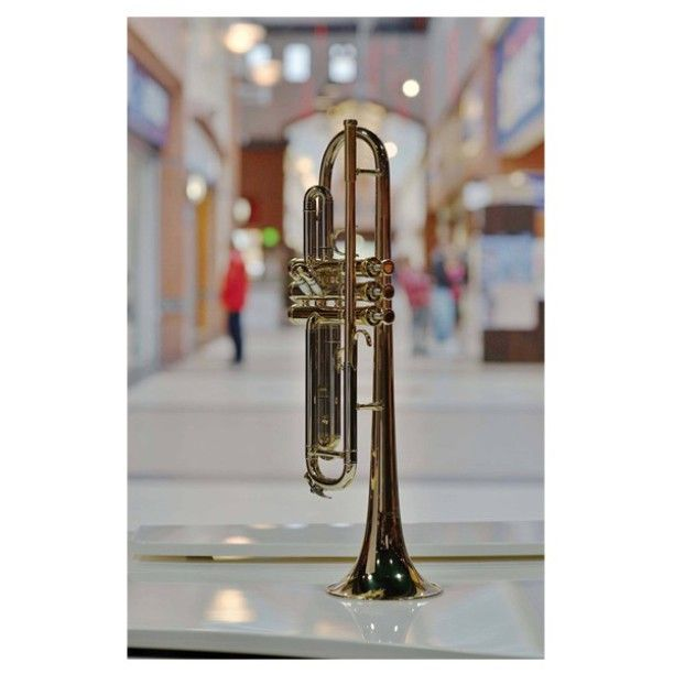 #trumpet #space #instrument #beauty #muziker