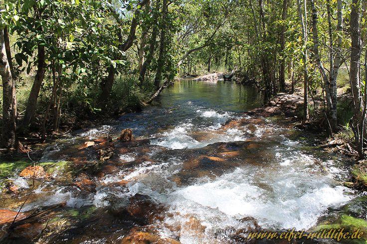 S9E10: DETOUR: Wet: Hike thru Litchfield National Park